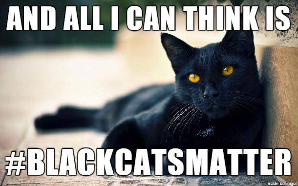 Where Is Having Black Cat Bad Luck
