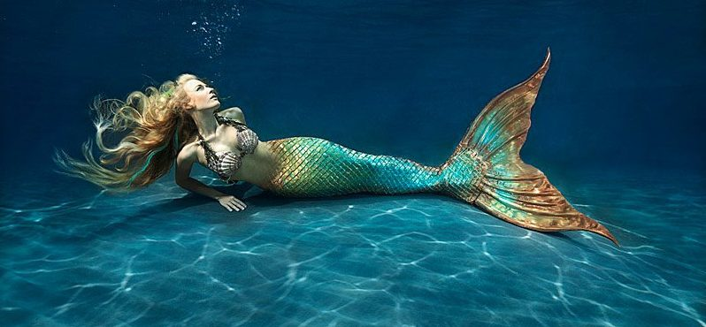 15 Myths and Legends (and facts) on Mermaids